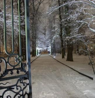 2009-01-05 la chesnaie sous la neige 43