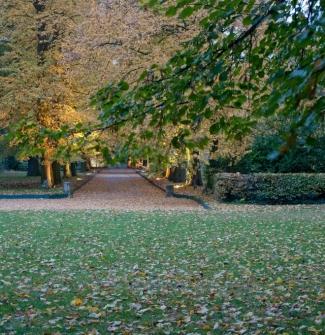 2010-11-02 - couleurs dautomne la chesnaie - 24